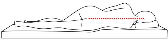 Thomsen Vario-System - gerade Wirbelsäule